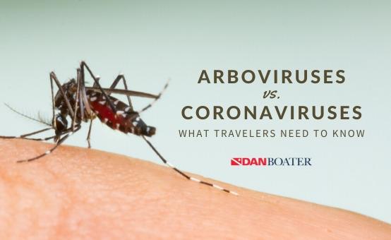 arboviruses vs coronaviruses what travelers need to know aedes aegypti mosquito
