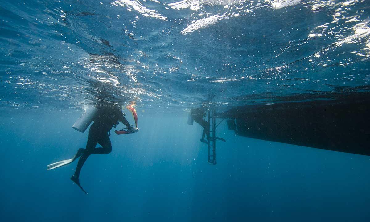 Travel Insurance Open Water Swimming