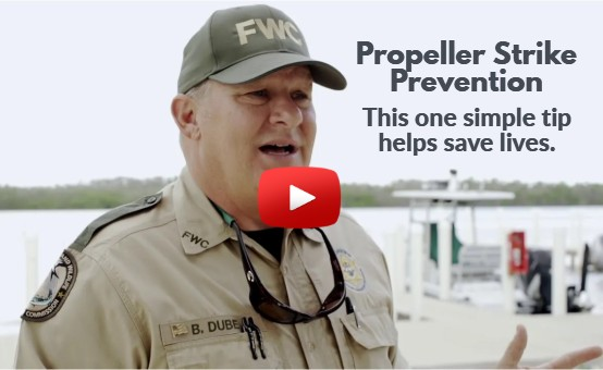 FWC officer addresses propeller strike prevention